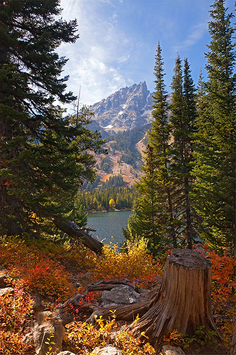 Jenny Lake in the Tetons.   Places like this always remind me that there is still hope.  Maybe its not true that  the 1960s were the beginning of the end.