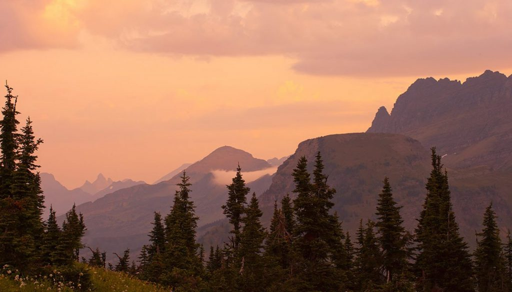 Soft foggy dawn on Logan Pass in Glacier National Park in Montana.   Places like this always remind me that there is still hope.  Maybe its not true that  the 1960s were the beginning of the end.
