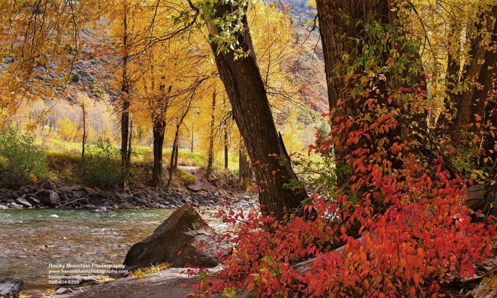Autumn along the Crystal River in Colorado.   Places like this always remind me that there is still hope.  Maybe its not true that  the 1960s were the beginning of the end.