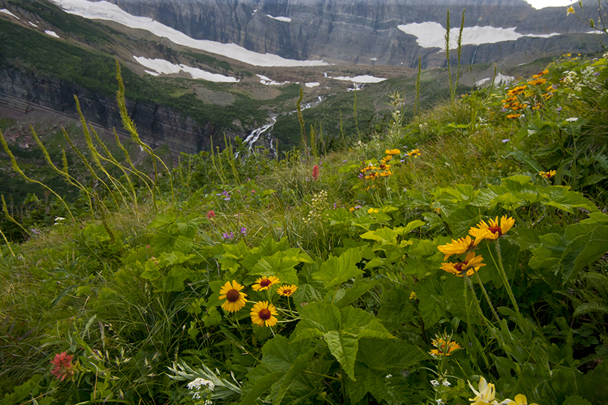 On the trail to Grinnell Glacier.  What is left of this glacier can be seen at the top.