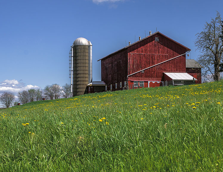 Farm in upstate New York