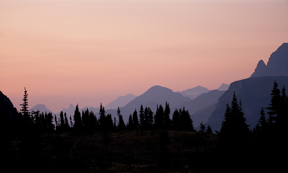 Sunset over the pines and the distant peaks in Glacier National Park