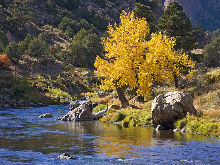 The Arkansas River in Colorado