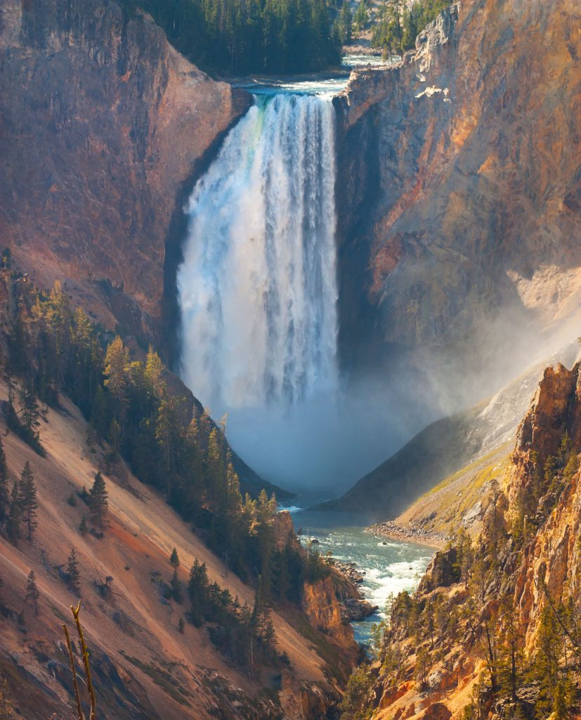 Yellowstone Falls.  As usual I give you a few images of the natural world to leaven the reality of what in happening in the social and political world right now.