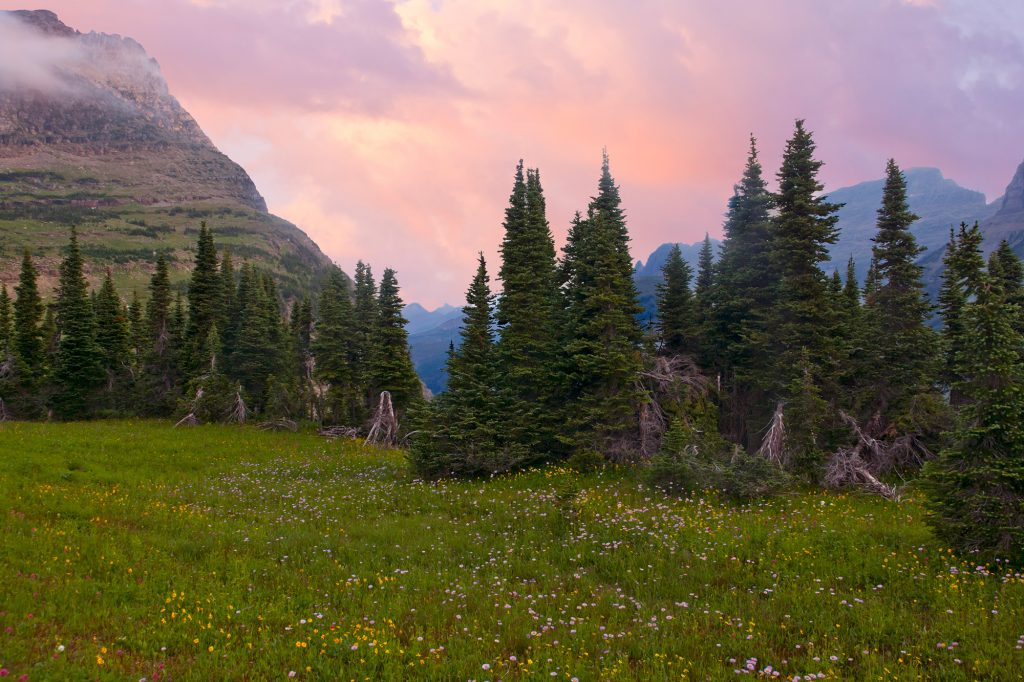 Dawn at Logan pass.  Scenes like this lead us to forget that climate change is complex.