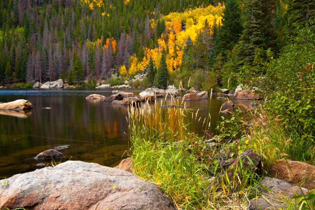Bear Lake in Rocky Mountain National park.  The California fires are a warning that places like this may not last forever.