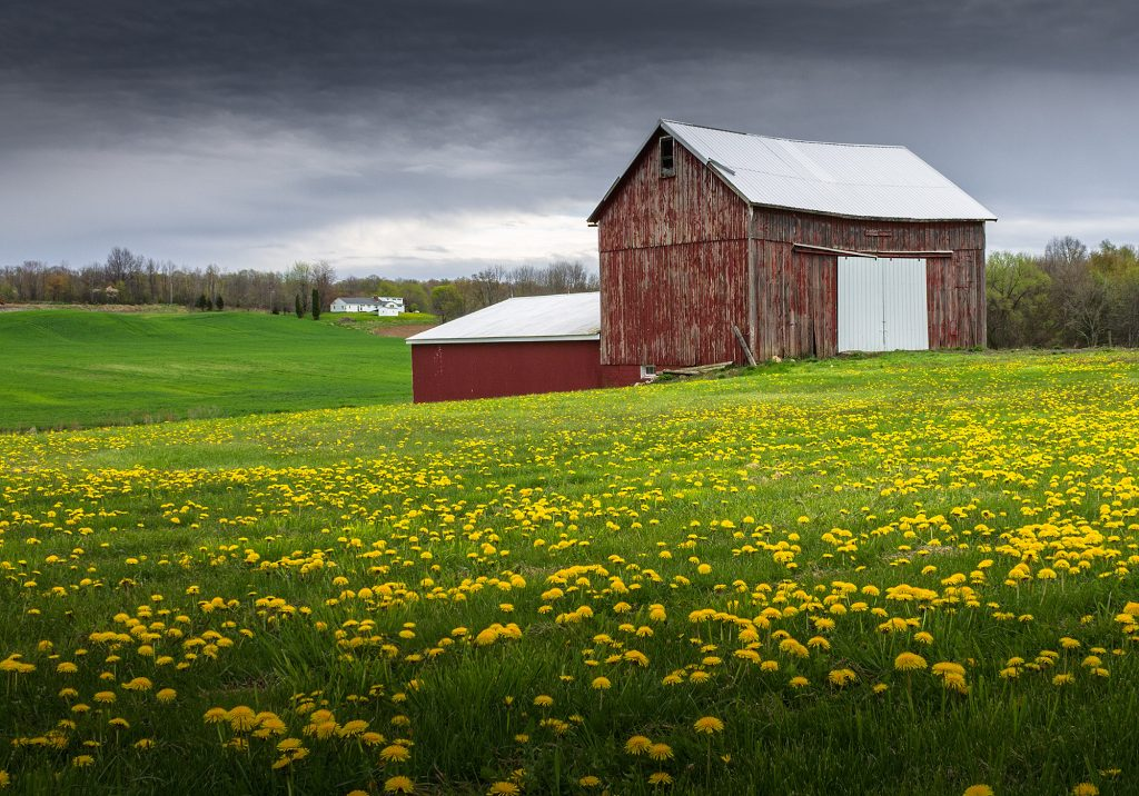 Farmland in Upstate New York,