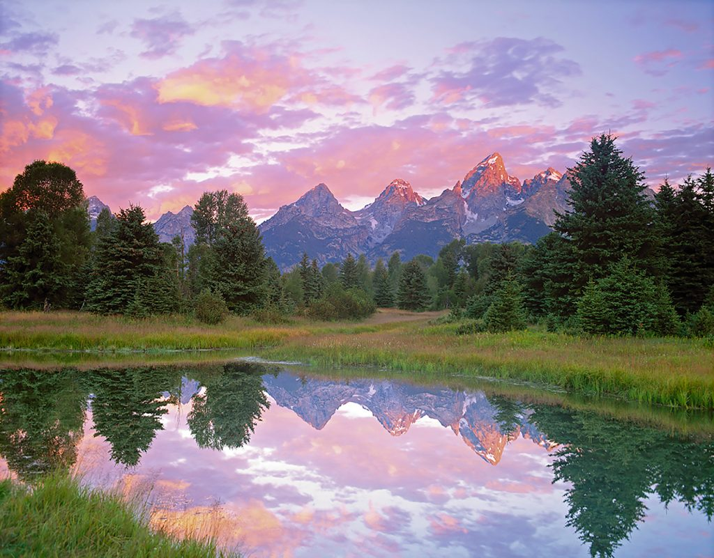Teton National Park in Wyoming..This article is about the best books on climate change and extinction.