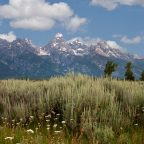 More pictures of the Tetons