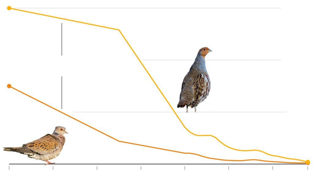 This graph shows the decline of the partridge and the turtle dove in the Netherlands between 1950 and 2018.  Populations of both species are now under 2000.  As you can see, the decline is devastating.  Both species have gone rom robust numbers to almost nothing.   New York Times.  So, Is Europe green, actually? Not so much.
