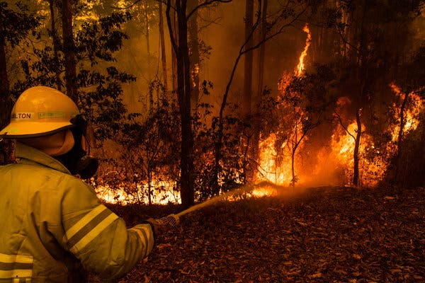 Another image from the Australian wildfire.