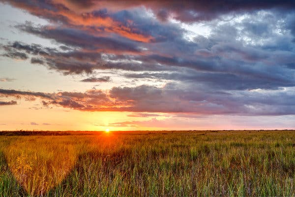 Sun setting over the sea of grass in the Everglades.  The problems of giant dams along with the upcoming end of clean, fresh water all over the world is debatably the greatest problem now faced by humans. On the Damming of Rivers describes one small piece of this problem.