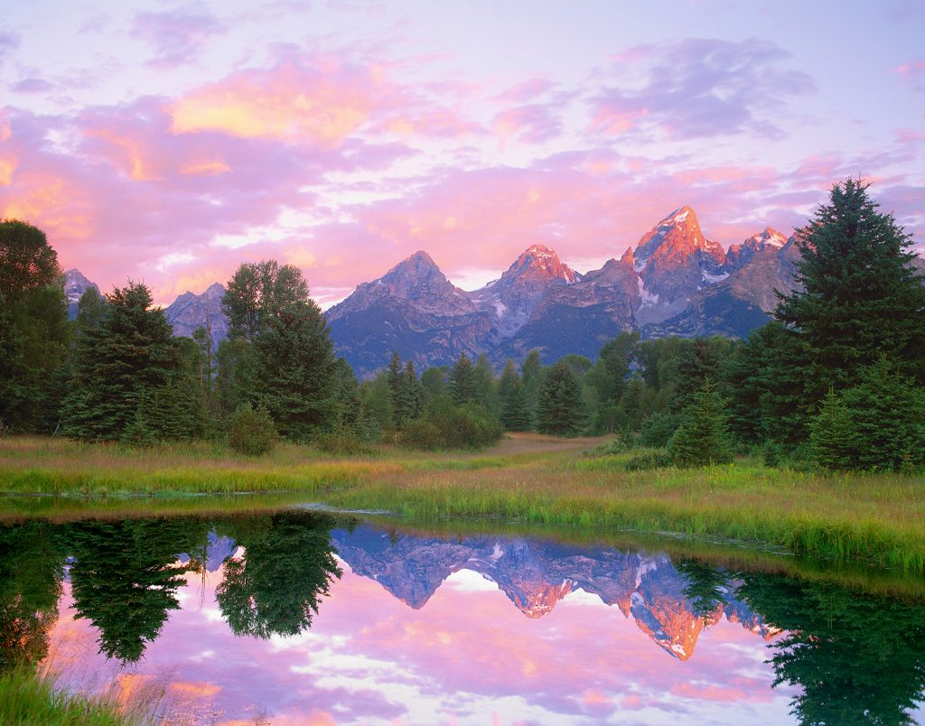Dawn in the Tetons of Wyoming.  The fact that the Covid-19 pandemic is getting scarier and scarier seems almost incompatible with the remaining beauty of the natural world.