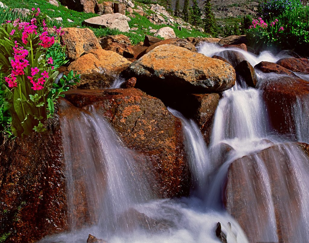 Primrose waterfall in Indian Peaks Wilderness in Colorado.  This is a long way from the politics of William Barr, Trump's Chief Enabler.  At least there are a few things in American more honest and than Trump and Barr.