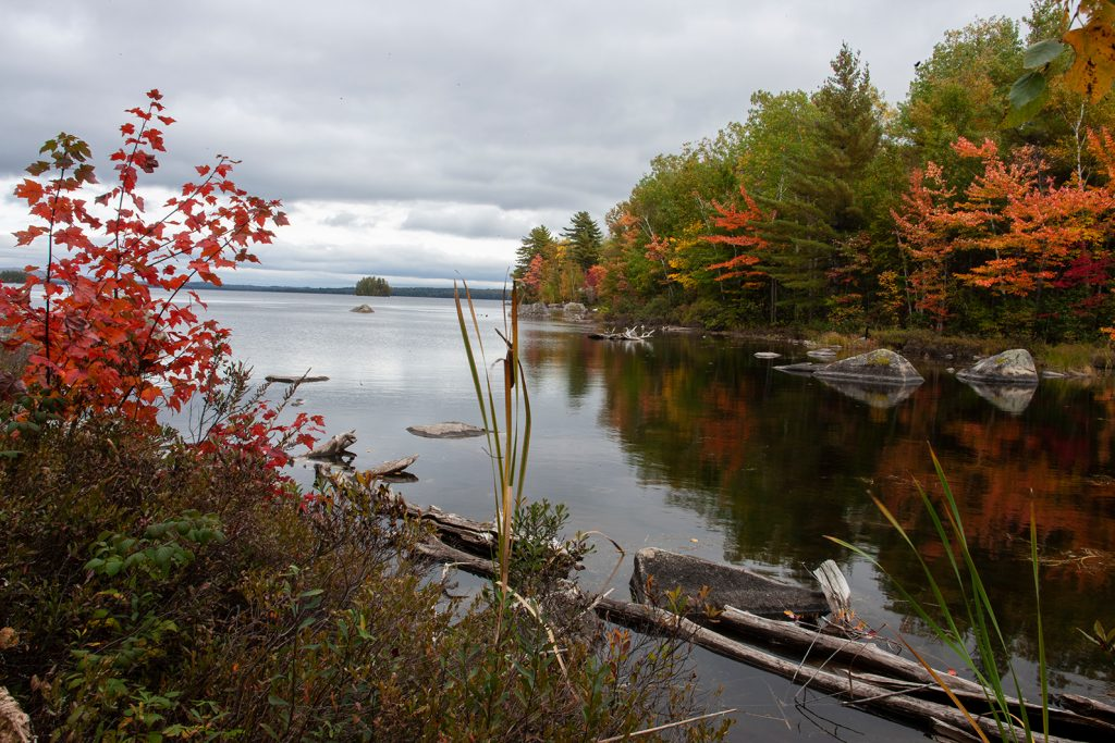One of many large lakes in the Maine North Woods.  Many now think America is now moving confidently & proudly Into mass death?    What a tragedy that this is happening in a country so full of beautiful places like this.