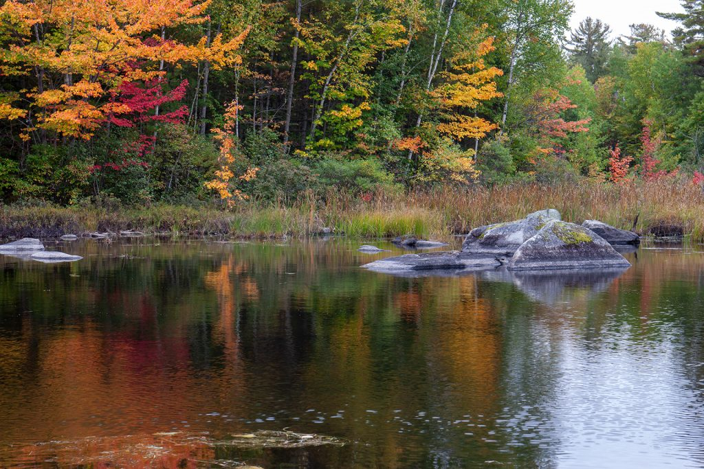 Pond in Baxter State Park in Maine.