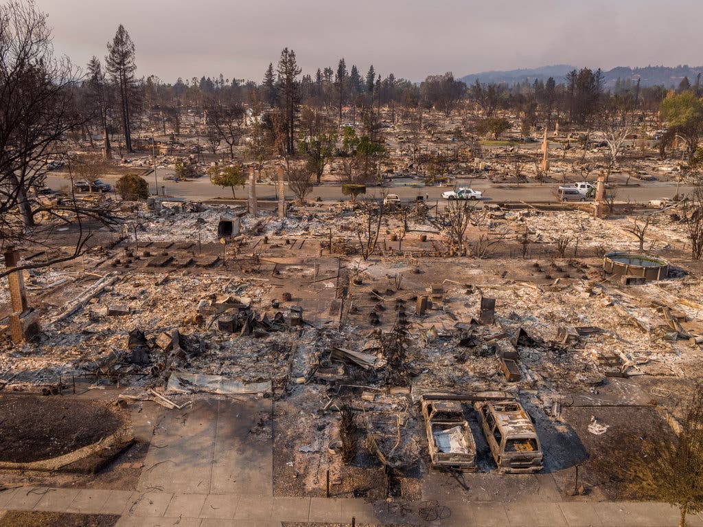 Fire damage after the one of the California fires a couple of years ago.  We can see signs of the end of nature everywhere these days.