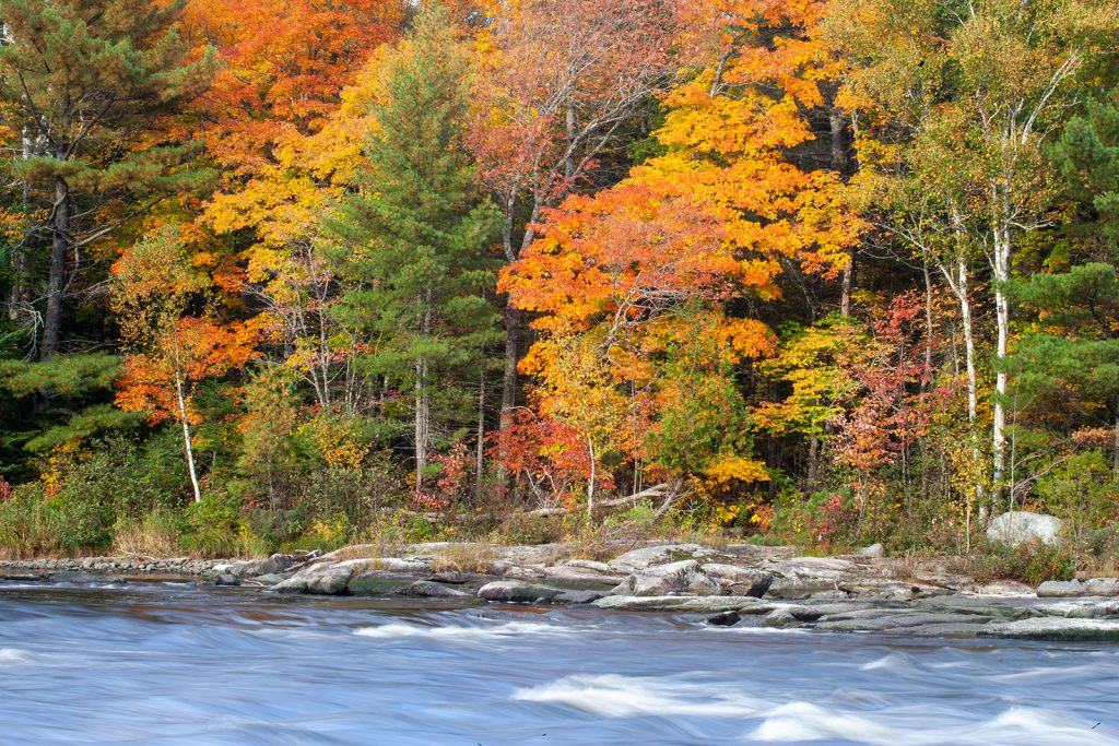 Pistauquit River in Northern Maine.  Their irreversibility is why tipping points are so scary.