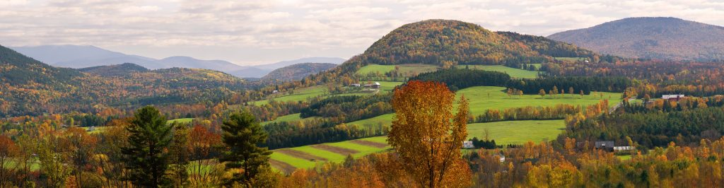The Vermont Countryside is still healthy in many areas