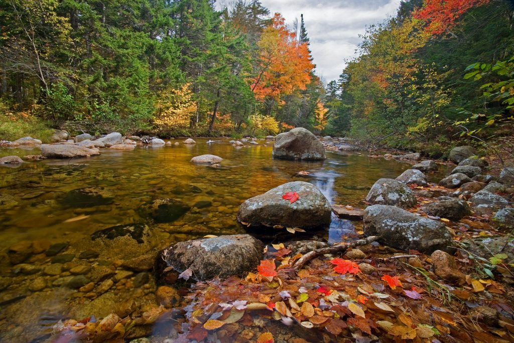The Swift River in New Hampshire