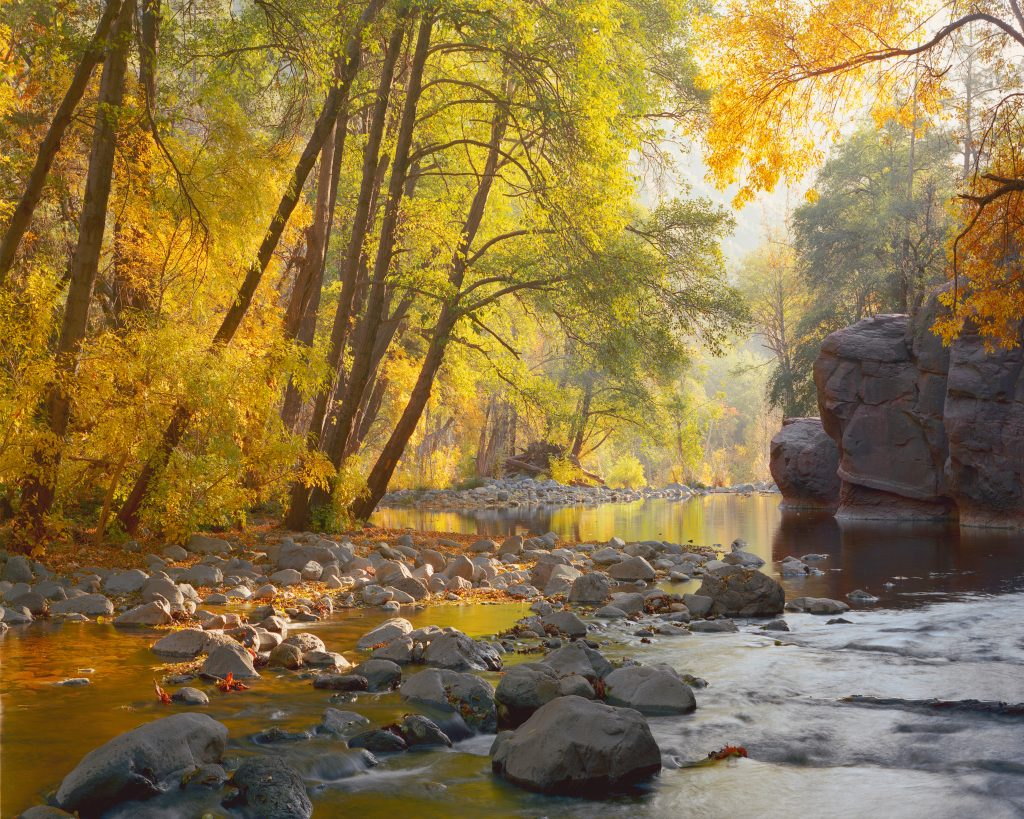 Oak Creek near Sedona, Arizona.  No pandemics and a beautiful earth go together.  But we are destroying our earth and many pandemics are in our future.    How to stop the next pandemic?