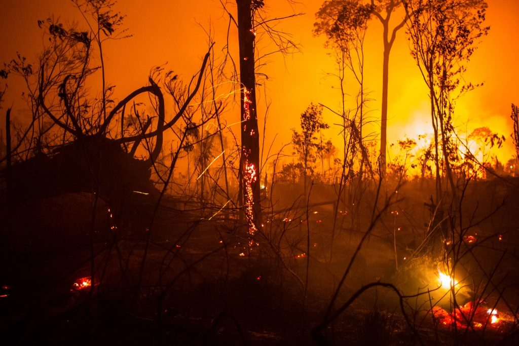 The Amazon rain forest burning in Brazil.  Warming has complex consequences that are often not obvious.