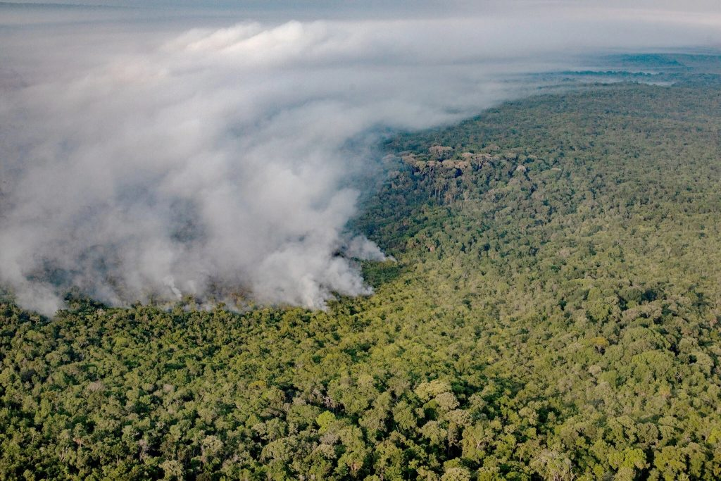 Fires in the Amazon Rain Forest may be another source of irreversible tipping points.  Our rain forests are very fragile and it doesn't take much to irreversibly doom them. When they are gone, there is probably  little hope for humans.  Warming has complex consequences that are often not obvious.