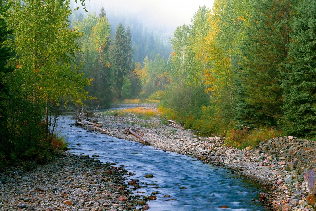 Foggy Glacier River.  This post is about Youthful misadventures: Living the Good Life.  But as usual, I illlustrate it with images of natural America.  Living the good life was always about living in natural America.