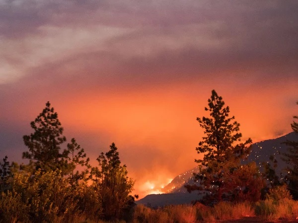 Another picture of the hills above Lytton burning.  Why are we letting the world burn?